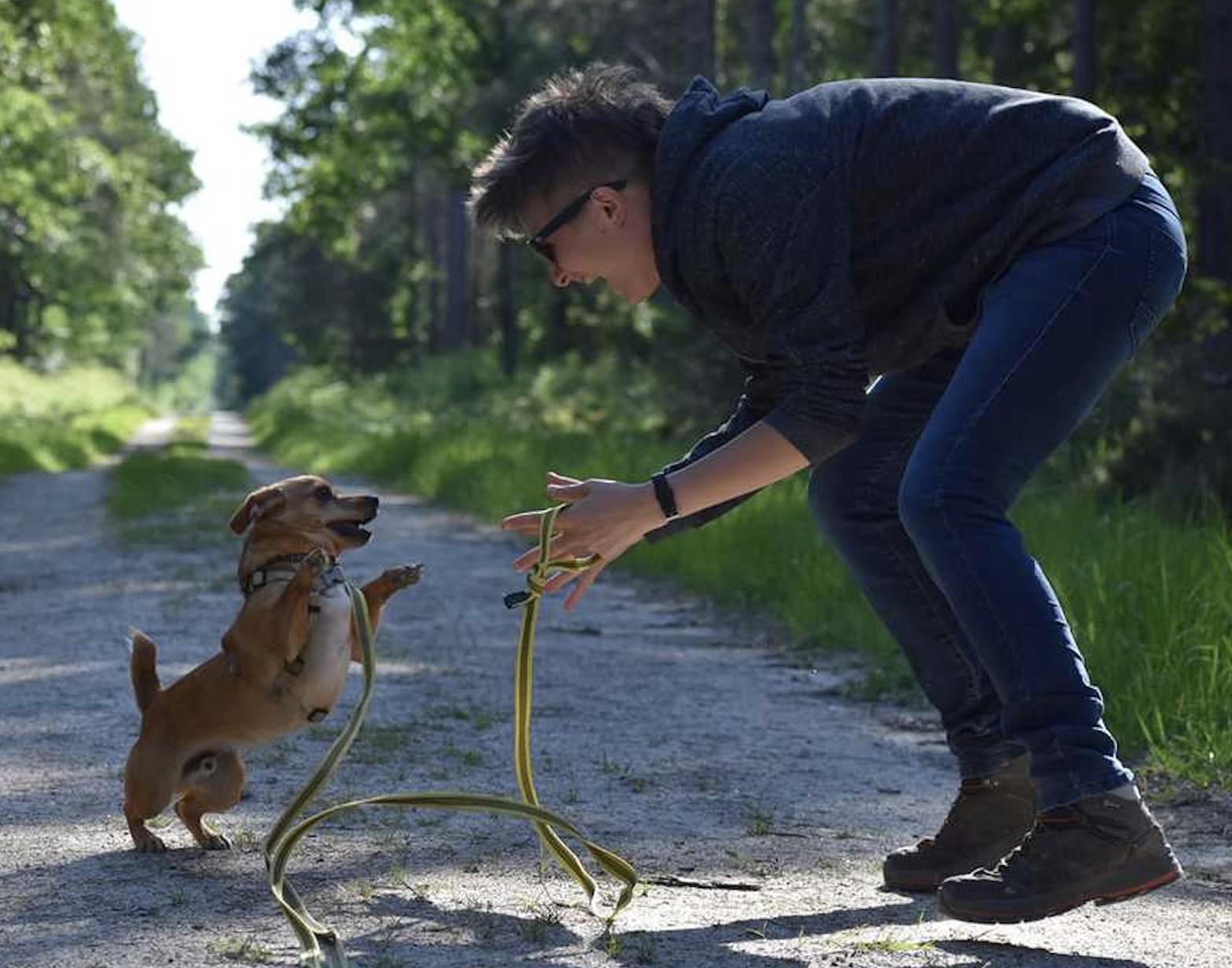 éducation canine 45